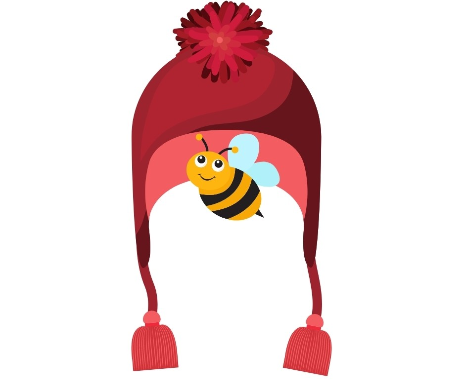 have a bee in one's bonnet